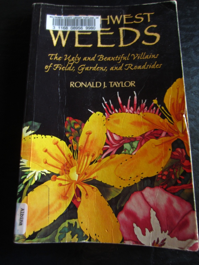 I got a book at the library called Northwest Weeds by Ronald J. Taylor. Although I leafed through it from beginning to end, I didn't find anything that looked like that monster-like thing growing in my garden.