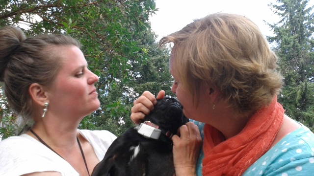 Tamara and Tammy with cute pug Number 2. Adorable...