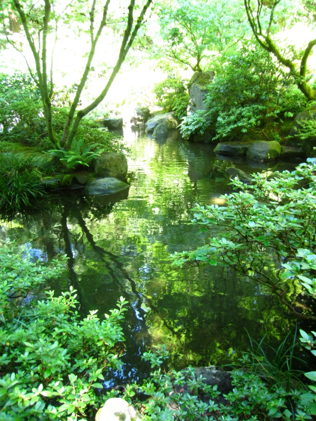 From the cool, lush, green, soothing shade of the Japanese Garden...