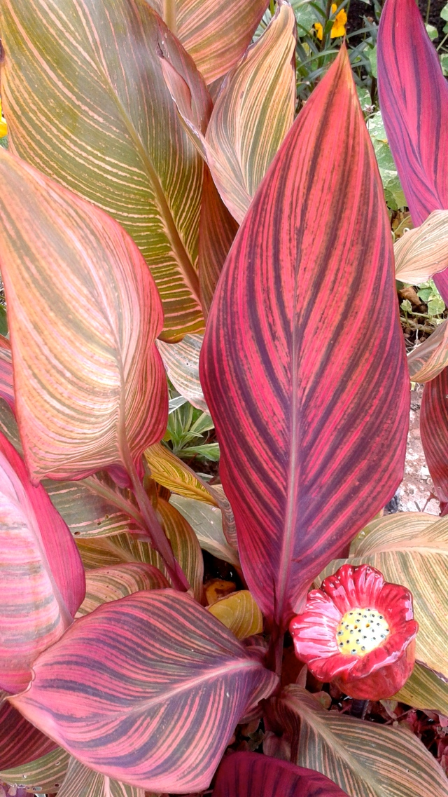 The stunning foliage of a Canna lily, embellished with a glass flower.