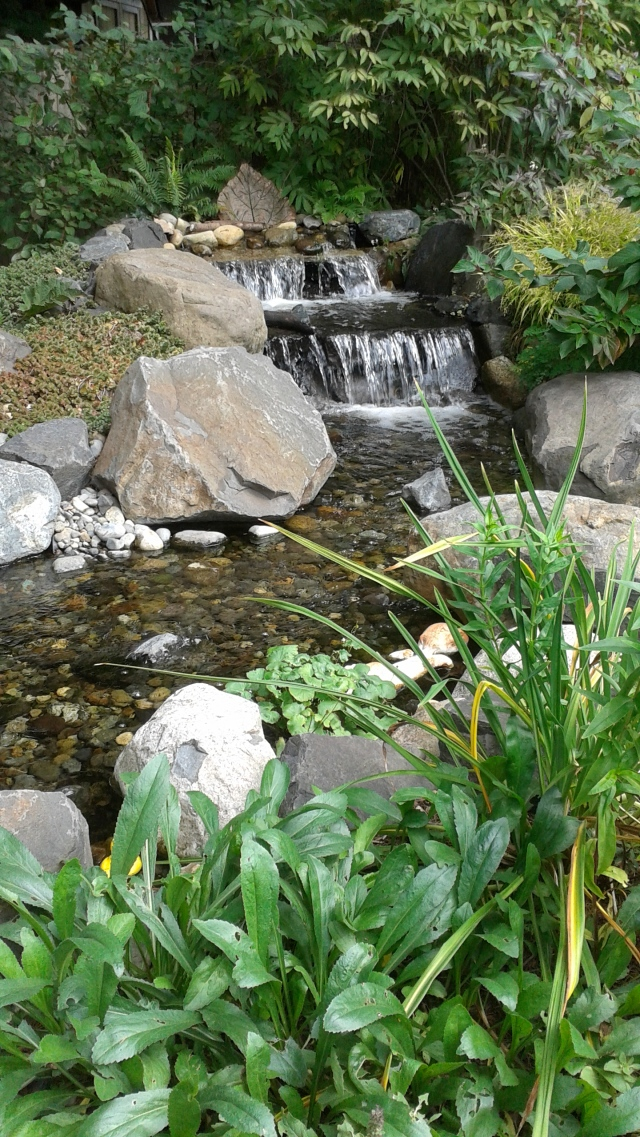 The sound of water - a stream emerging out of a wooded area in the back of the garden. So peaceful...
