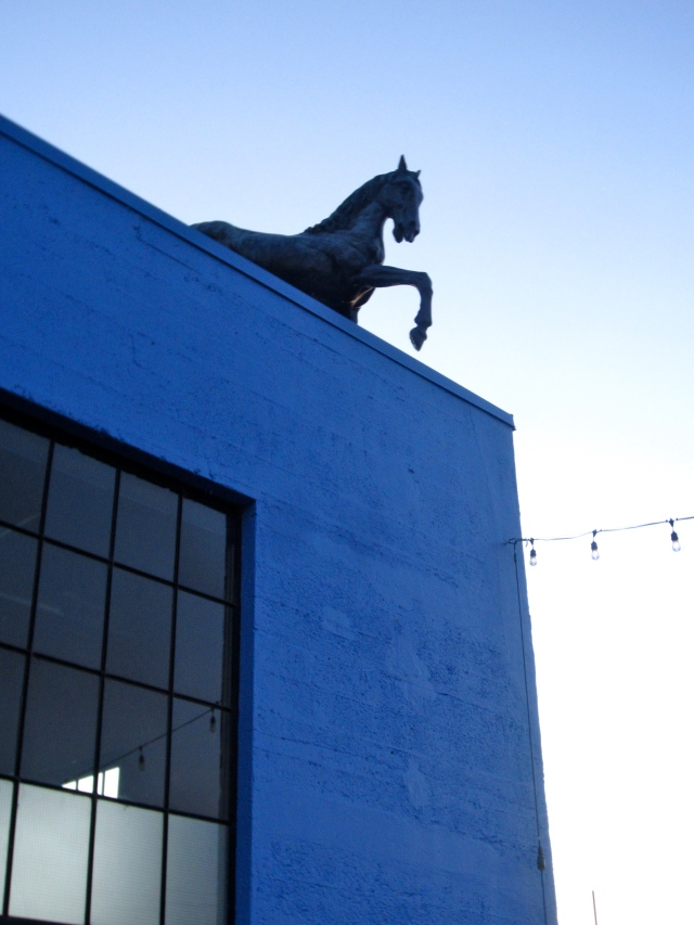There's just something really alluring about a horse on a roof.