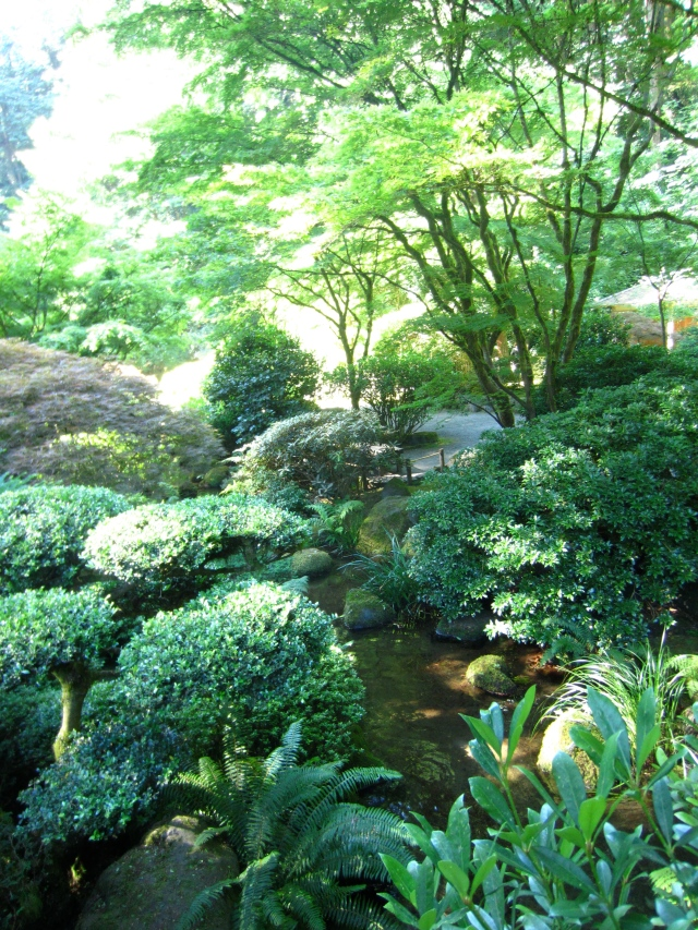 I really wonder how places like the Portland Japanese Garden, where so much of the structure of the gardens consist of Azaleas and Rhododendrons deals with them...