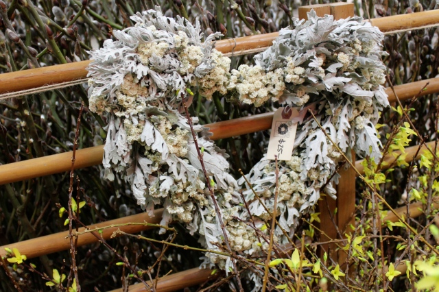 With Valentines Day around the corner, there were a few reminders of that too. I liked to see what I think is the use of Silver Brocade Artemisia in this heart-shaped wreath.