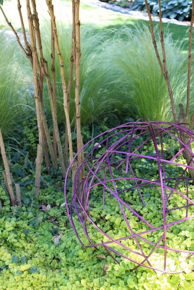 The billowing Mexican feather grass (Nasella tenuissima) in the background, stalks of Moyer's Red Nandina, Ajuga, and Lysimachia 'Aurea' provide a backdrop for the purple wire orb.