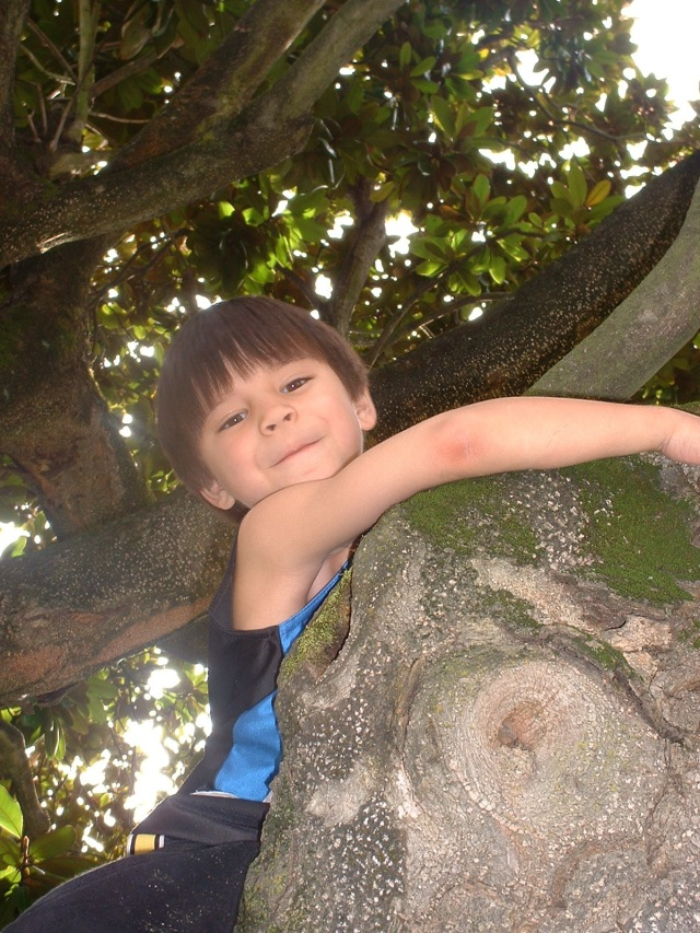 This was best climbing tree EVER!!!