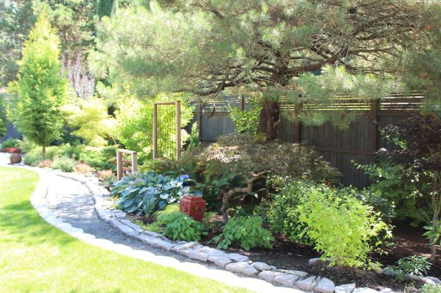 Where previously there was a sloping lawn, a cut -and-fill and a low retaining wall to shore up the now leveled lawn, allowed for a generous gravel path to be installed along the entire length of the garden. On the downside of the path, toward the fence, is a mix of mature and new plantings, creating a year-round tapestry of color and texture.