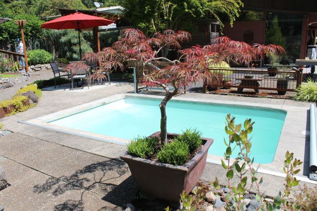 Immediately west of the house, there is a small, shallow pool for soaking in. To give you some perspective - the entrance to the outdoor kitchen and the seating area I mentioned above, is immediately behind the red umbrella on the left.