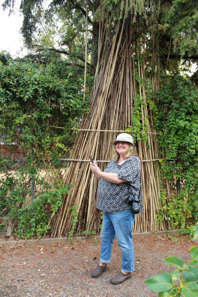 It totally helps to have a large supply of bamboo stakes when all those veggies need help staying upright.
