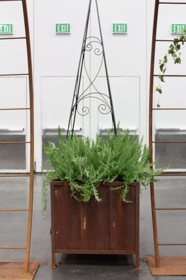 Recycled rusted corrugated metal panels used for planter boxes.
