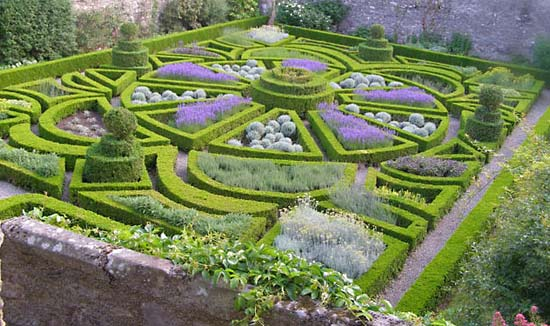 Here is the Parterre from Bodysgallen Hall, borrowed from the Britannica webpage on parterres. This is more like a parterre than a knot garden in that it doesn't feature the intertwining hedges as shown in the Dixon garden above.
