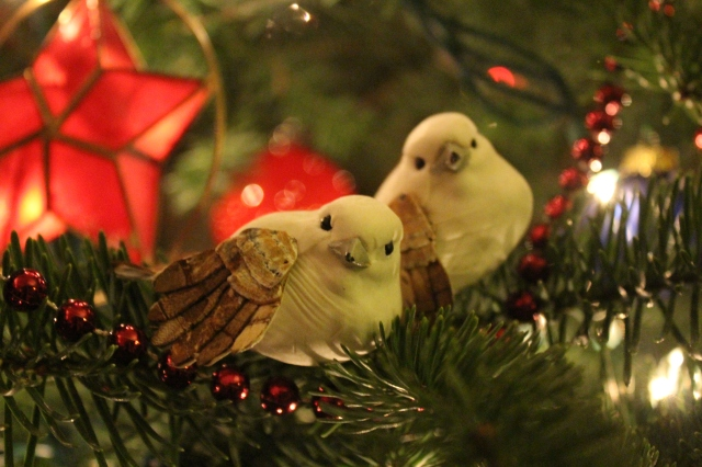 These little birds were attached to a wedding gift from my friend Terri. I have no idea where she got them, but found them adorable, so they are now doing Christmas duty in our house.