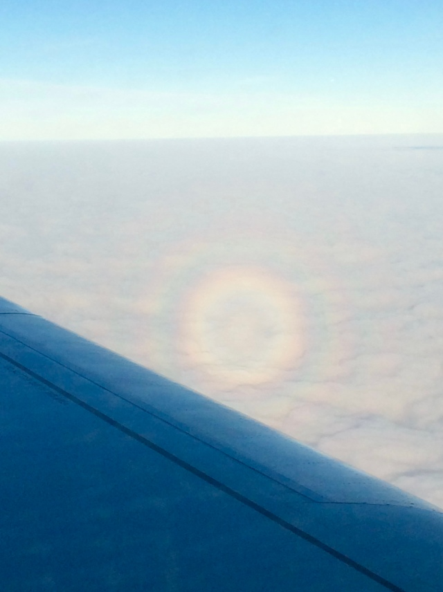 """What is called a """"glory"""" - an optical phenomenon where light is refracted through drops of water."""