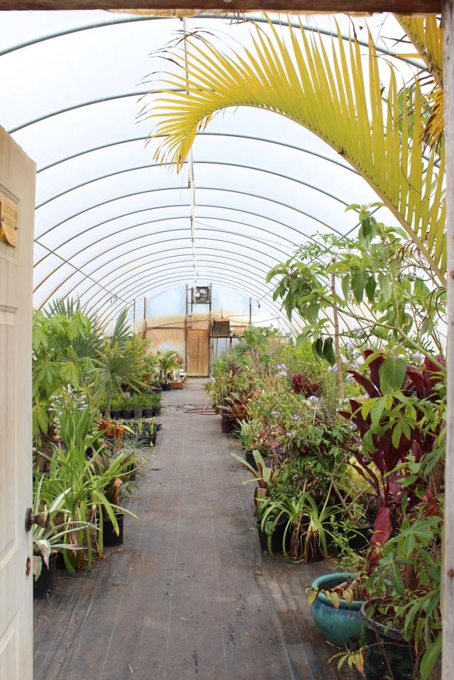 Rare Plant Research