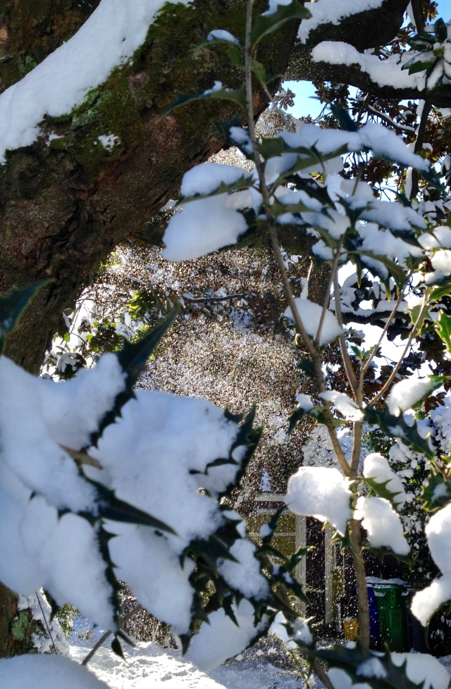 snow scrim