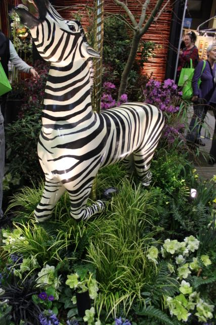 This year, they had a Zebra as part of their composition.