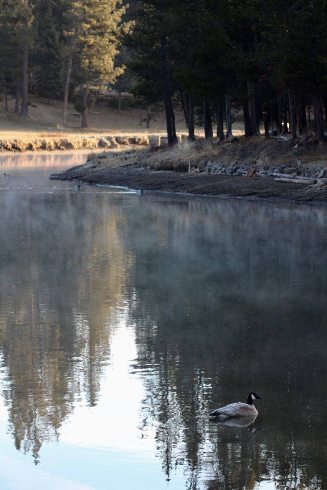 Deschutes river in the morning mist